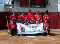 2015 PA 10-11yr Section 1 Tournament